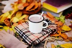 温暖被编织的围巾和一本书在一个木盘子 平安的秋天Fr 库存图片