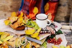 温暖被编织的围巾和一本书在一个木盘子 平安的秋天Fr 免版税图库摄影