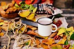 温暖被编织的围巾和一本书在一个木盘子 平安的秋天Fr 免版税库存照片