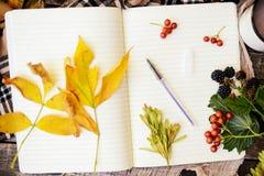 温暖被编织的围巾和一本书在一个木盘子 平安的秋天Fr 免版税库存图片