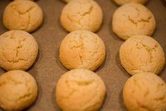 温暖,金黄褐色,花生冷却在机架的芯片曲奇饼 在烤箱的曲奇饼,小圆面包卷 免版税库存图片