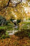 温泉公园在秋天- Marianske Lazne -捷克 免版税库存照片