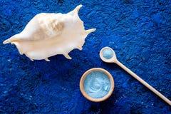 温泉化妆用品设置了与浴的海在蓝色背景顶视图大模型的盐和壳 图库摄影
