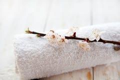 温泉和健康设置与樱花和毛巾 库存图片