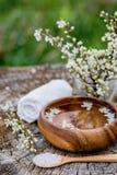 温泉和健康设置与海盐,油精华,花和 免版税库存图片