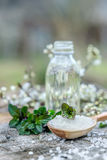 温泉和健康设置与海盐,油精华,花和 免版税库存照片