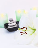 温泉和禅宗平衡 库存照片