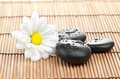 温泉在竹背景的一块石头 图库摄影