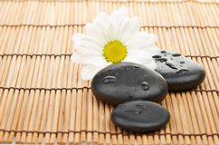 温泉在竹背景的一块石头 库存照片