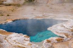 温泉在黄石 牵牛花池在怀俄明的黄石国家公园 免版税库存照片