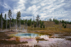 温泉在黄石国家公园 库存图片