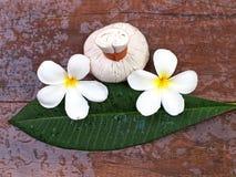 温泉按摩压缩球,与花,泰国的草本球 免版税库存照片