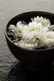 温泉放松概念 在碗的美丽的白色温泉花在水中 免版税库存照片