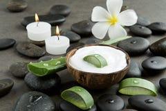 温泉概念 切在白色奶油的芦荟维拉在椰子壳机智 免版税图库摄影