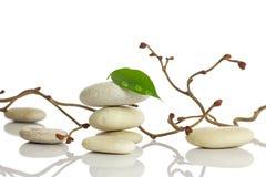 温泉石头。 免版税库存图片