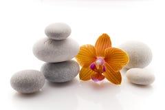 温泉石头 免版税图库摄影