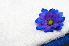 温泉精华、毛巾和花 免版税库存照片