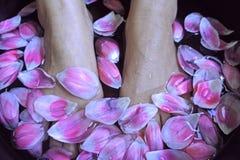 温泉脚按摩健康妇女花放松疗法亚洲人 免版税库存照片