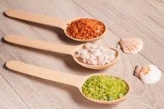 温泉自然产品 有棕色,白色和绿色s的木匙子 库存照片