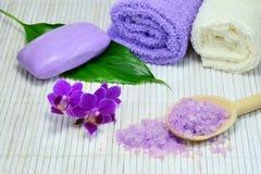 温泉设置与紫色兰花 库存照片