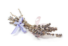 温泉辅助部件,在白色淡紫色隔绝的两束 库存照片