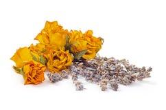 温泉辅助部件,染黄干玫瑰用在白色的淡紫色 免版税库存图片