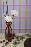 温泉,装饰项目 免版税图库摄影