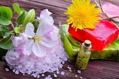温泉 与海盐的花 肥皂用在一木backgrou的果子 库存图片