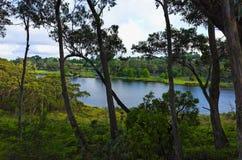 温特沃思落湖蓝山山脉澳大利亚 免版税库存图片