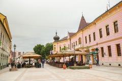 温科夫齐镇在克罗地亚 免版税图库摄影