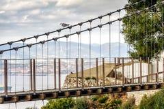 温莎桥梁-直布罗陀` s位于上部岩石的吊桥 直布罗陀英国海外领地 免版税库存图片