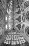 温彻斯特大教堂曲拱  库存照片