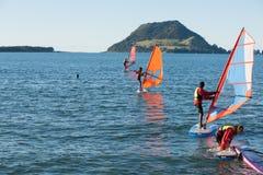 港口风帆冲浪的tauranga 免版税图库摄影