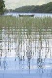港湾Leane湖,基拉尼国家公园 库存照片