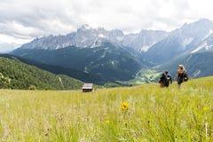 游人下降对谷阿尔卑斯上午的山 免版税库存图片