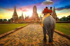 游人乘坐大象在Wat Chaiwatthanaram寺庙在Ayuthaya,泰国 免版税库存图片