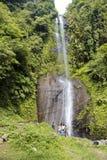 游人享受热带瀑布视图的一个小组 库存图片