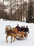 游人享受用马拉的雪橇乘驾 库存照片