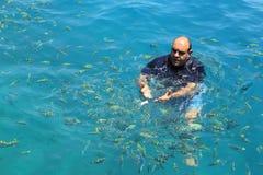 游人享用与哺养的鱼在热带海在发埃发埃isl 免版税库存照片