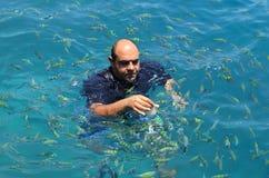 游人享用与哺养的鱼在热带海在发埃发埃isl 图库摄影
