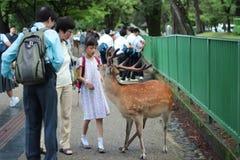 游人享用与鹿的曲奇饼在sideway 图库摄影