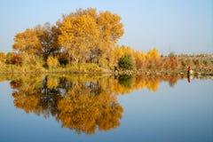 游人和五颜六色的杨属水反射在秋天由河塔里木 免版税图库摄影