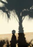 游人和棕榈树剪影  免版税库存图片