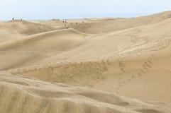游人和沙丘在Maspalomas大加那利岛的 免版税库存照片