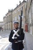 游人和皇家卫兵变动 免版税库存照片
