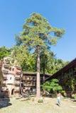 游人在庭院特罗扬修道院的中心在保加利亚 免版税库存照片