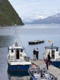 年轻游人在挪威 图库摄影