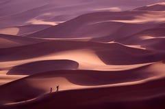 游人在沙漠 免版税库存图片