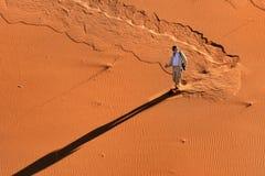 游人在纳米比亚沙漠,纳米比亚 库存照片