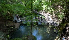 游人在蝴蝶谷森林里在罗得岛海岛,希腊上的探索远足路 库存图片
